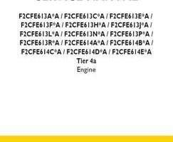 Service Manual for New Holland Engines model F2CFE613P*A