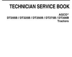 AGCO 4346393M2 Service Manual - DTB Tractor (tier 3)
