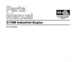 AGCO AG054174 Parts Book - 3176B Engine (industrial)